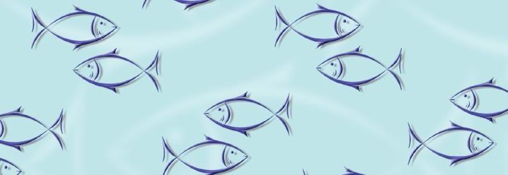 transparentpapier a4 fisch  5 blatt  dasbastelnde