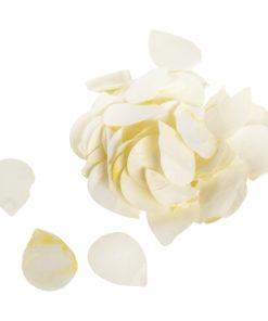 Papier Blütenblätter in creme