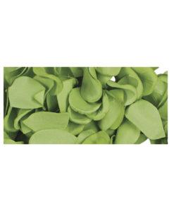 Papier Blütenblätter in grün