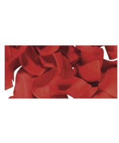 Papier Blütenblätter in rot