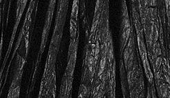 Rayher Bast matt, schwarz