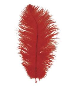 Straußenfeder rot, zum Basteln