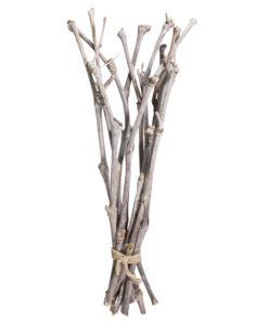 Rayher Weinreben für die Floristik