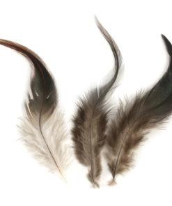 rayher hahnenfeder 10-15 cm