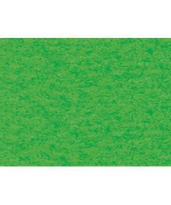 Bastelkarton 220 g/m² geprägt grasgrün