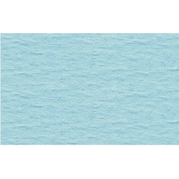 Bastelkarton 220 g/m² geprägt hellblau