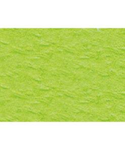 Bastelkarton 220 g/m² geprägt hellgrün