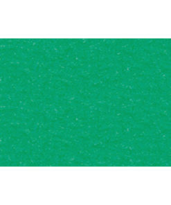 Bastelkarton 220 g/m² geprägt tropicgrün
